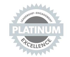 Platinum Chapter Standards Medal